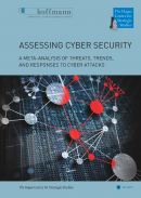 Assessing Cyber Security
